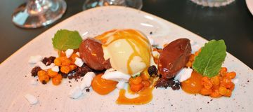Sorbet with sea buckthorn and chocolate. A very good and beautifully served dessert Stock Photos