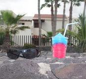Sorbet and solar glasses. Surrounded by palm trees stock image
