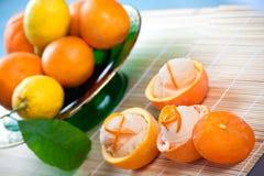 Sorbete anaranjado en frutas ahuecadas Fotografía de archivo libre de regalías