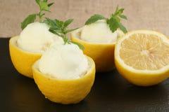 Sorbete del limón Imagen de archivo libre de regalías