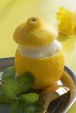 Sorbete del limón Foto de archivo libre de regalías