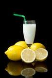 Sorbete del limón Imagen de archivo