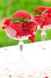 Sorbete del vino de mesa de la pasa roja, espacio de la copia para su texto Imagen de archivo