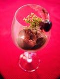 Sorbete fresco de la cereza Imagen de archivo libre de regalías