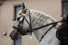 Sorbian Easter Riders in Upper Lusatia, Saxony, Germany. Royalty Free Stock Photo