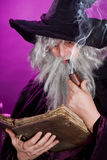 Sorcerer with pipe Stock Photos