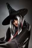 Sorcerer portrait Stock Photography