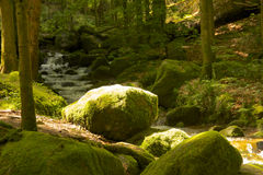 Sorcerers Stone 2. Brightly lit mossy rock at a Black Forest brook stock photos