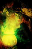 Sorcery. Fairy wicked witch in the wizarding lair. Magic. Halloween Stock Photos