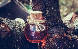Sorcery potion in the forest. Love Potion. Magic and Sorcery Stock Images