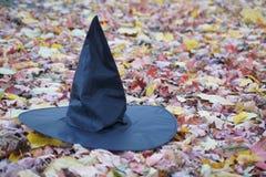 Sorcières chapeau et feuilles Images stock