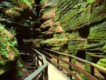 Sorcières Gulch dans des vallons du Wisconsin Image stock