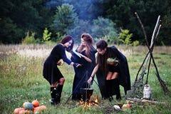 Sorcières préparant un breuvage magique Photo libre de droits