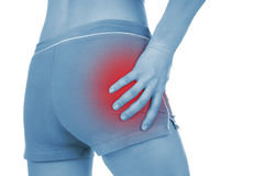 Sore pelvis, shown red, keep handed Royalty Free Stock Photography