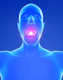 Sore throat inflammation. Male and throat inflammation pain Royalty Free Stock Photo