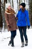 Sorella che ride su una strada di bianco di inverno fotografia stock