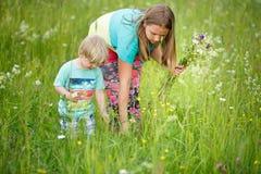 Sorella con i fiori di raccolto del fratello fotografia stock