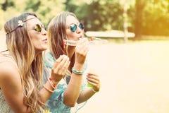 Sorelle gemellate che fanno le bolle di sapone in un parco Fotografia Stock Libera da Diritti