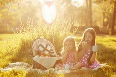 Sorelle picnic Immagine Stock Libera da Diritti