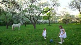 Sorelle sveglie nel gioco bianco del vestito con la palla nel giardino di fioritura dell'albero della molla archivi video