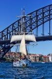 Soren Larsen. SYDNEY, AUSTRALIA - DECEMBER 26,2013: the Brigantine Tallship Soren Larsen sails under the Harbour Bridge in Sydney, Australia on December 26,2013 Royalty Free Stock Photography