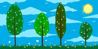 Sorgente Alberi sboccianti del fumetto sul campo con i fiori, le nuvole ed il sole Fotografie Stock Libere da Diritti