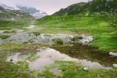 Sorgente alpina Fotografie Stock Libere da Diritti