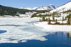 Sorgente in anticipo in alta sierra lago Fotografia Stock