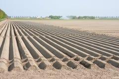 Sorgente attendente del terreno coltivabile nudo Fotografie Stock