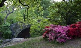 Sorgente in Central Park Immagine Stock Libera da Diritti
