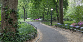 Sorgente in Central Park fotografia stock