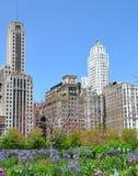 Sorgente in Chicago immagine stock libera da diritti
