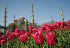 Sorgente a Costantinopoli Immagine Stock