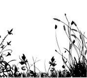 Sorgente dei fiori Immagine Stock Libera da Diritti