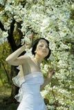 sorgente del giardino della sposa Fotografia Stock Libera da Diritti