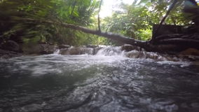 Sorgente di acqua calda, corrente nella giungla video d archivio