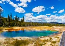 Sorgente di acqua calda del parco nazionale di Yellowstone Fotografia Stock