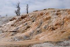 Sorgente di acqua calda mastodontica yellowstone Immagini Stock Libere da Diritti