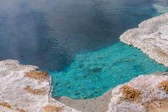 Sorgente di acqua calda in Yellowstone Mattina Glory Pool nel parco nazionale di Yellowstone del Wyoming fotografie stock libere da diritti