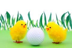 Sorgente e golf Immagine Stock