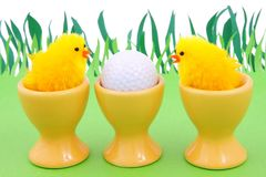 Sorgente e golf Immagine Stock Libera da Diritti