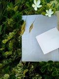 Sorgente Foglie e confine dei fiori fotografia stock libera da diritti