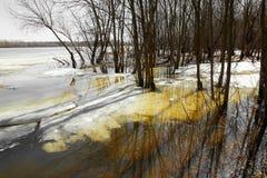 Sorgente L'ultimo ghiaccio sul fiume Alta marea Fotografia Stock