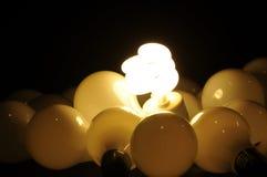Sorgente luminosa di Ecologigical Fotografia Stock