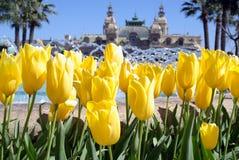 Sorgente a Monte Carlo Fotografia Stock