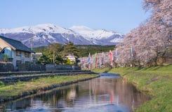 Sorgente nel Giappone Fotografia Stock