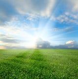 sorgente nuvolosa del cielo di paesaggio Fotografia Stock