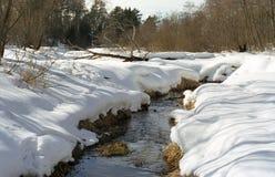 Sorgente. piccolo fiume Immagini Stock
