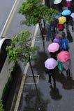 Sorgente piovosa Fotografie Stock Libere da Diritti