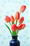 Sorgente possa Tulipani Fotografie Stock Libere da Diritti